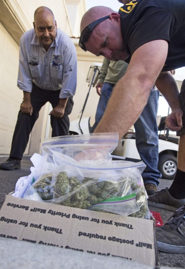 A sheriff's deputy thumbs through bagged quantities of marijuana at the scene of a drug bust in Canyon Country Wednesday. Austin Dave/The Signal