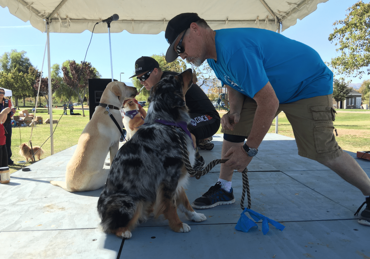 Cary Bruecher competes in the licking contest at Bark for Life, holding a peanut butter-covered spoon in his mouth as his Australian Shepherd Scooter licks it clean.