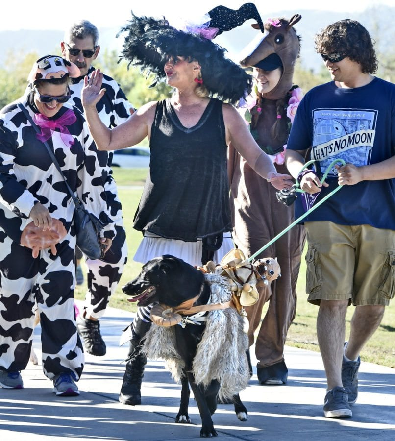 Cynthia Brown, center, waves to the by-standers as she and her three-year-old Lab mix dressed in a Star Wars costume join dozens of participants in the Doggy Lap parade to officially open the American Cancer Society's Annual Bark For Life event held at Bridgeport Park in Valencia on Saturday. Dan Watson/The Signal