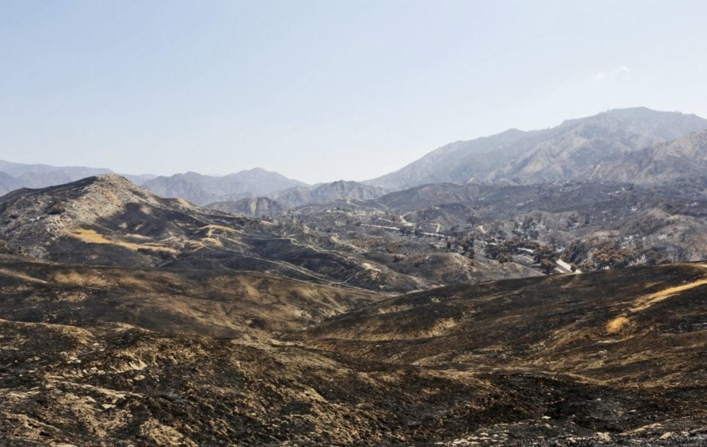 Golden Valley Ranch on Sept. 5, 2016, just over one month since the Sand Fire burned through. It is currently the only open space in Placerita Canyon that has re-opened to the public after the fire. Katharine Lotze/Signal