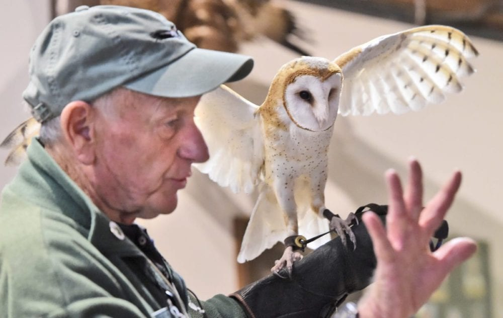 Volunteer Roger McClure describes how the air passes through the feathers of the flapping wings of Catori, a barn owl, makes them nearly silent during the weekly Native Live Animal Presentation at the Placerita Canyon Nature Center on Saturday. Dan Watson/The Signal