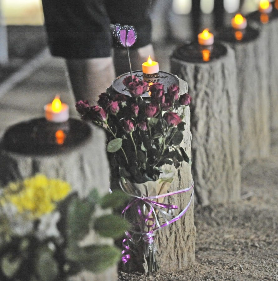 Candles atop tree stumps representing the lives cut short at the Youth Grove at Central Park ahead of the annual Walk of Remembrance on Wednesday, honoring Santa Clarita residents age 24 or under who died in car-related accidents. KATHARINE LOTZE/Signal. 10142015