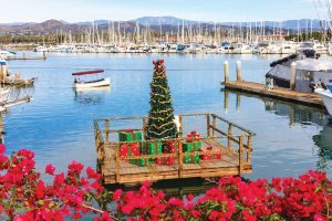 ventura-harbor_tree-on-dock