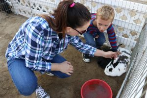 Sandy Berke, left, and Braden Berke, 5, pet a rabbit during Holiday Santa Day at Carousel Ranch in Santa Clarita on Saturday, Dec. 10, 2016. Nikolas Samuels/The Signal