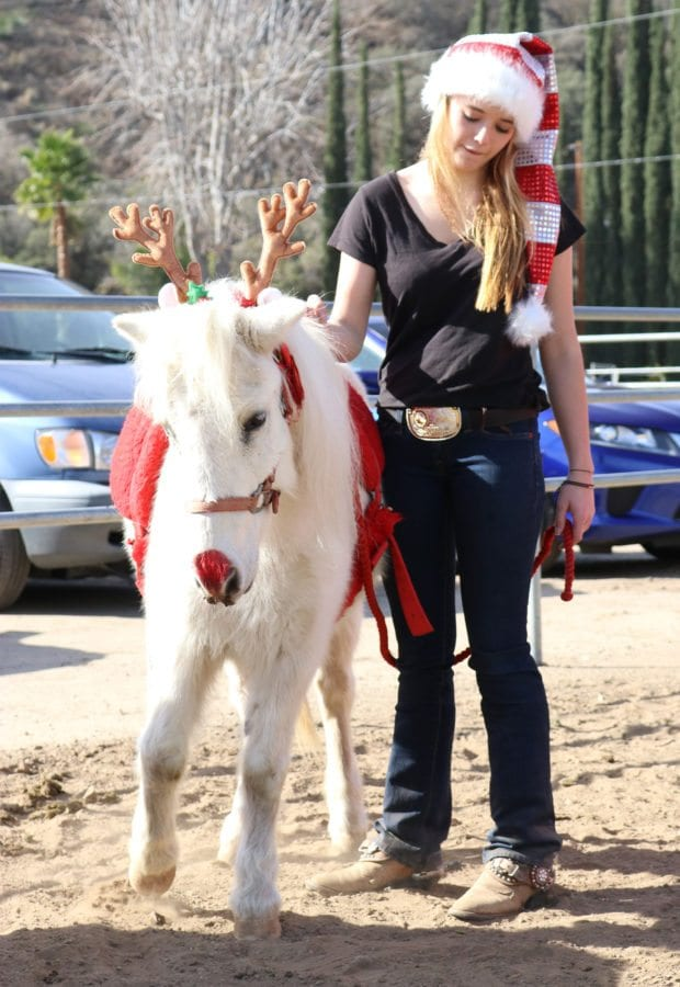 Katie Hood, 15, gets ready to walk in the parade with a pony at the Holiday Hoedown at the Gilchrist Farm near Saugus on Saturday. Nikolas Samuels/The Signal