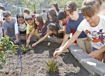 Helmers garden program receives grant to fund curriculum