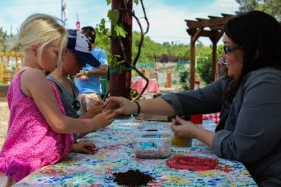 Children learn the importance of bees and gardens at Farm to Table
