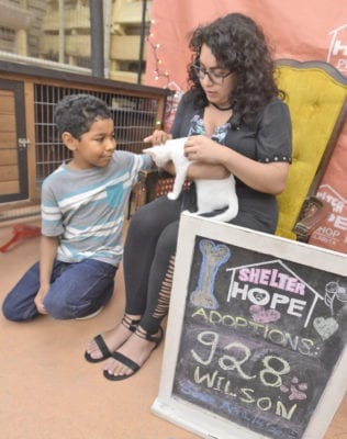It's 'Science Night' at Shelter Hope Pet Shop