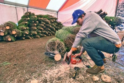 Local business selling Christmas trees for 22nd year