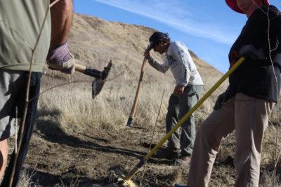 SCV Trail Users looking for volunteers