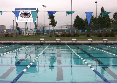 TMU Insider: Mustang freshmen start swim season with a spark