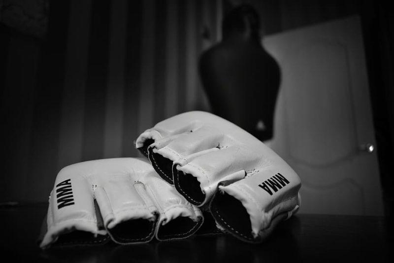 https://p1.pxfuel.com/preview/43/216/48/gloves-fighter-fight-sports.jpg